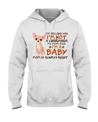 Dog Chihuahua I'm A Baby