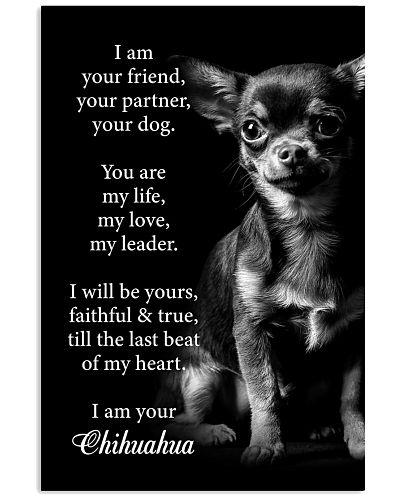 Dog Chihuahua I Am Your Friend