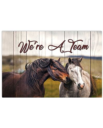 Horse - We Are A Team Quote Only