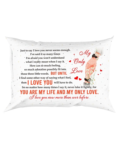 All Is Love - I Love You Will Do - Pillow