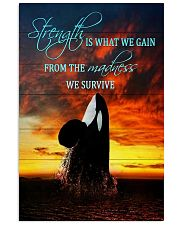 Orcas - Strength Is What We Gain From The Madness 11x17 Poster front