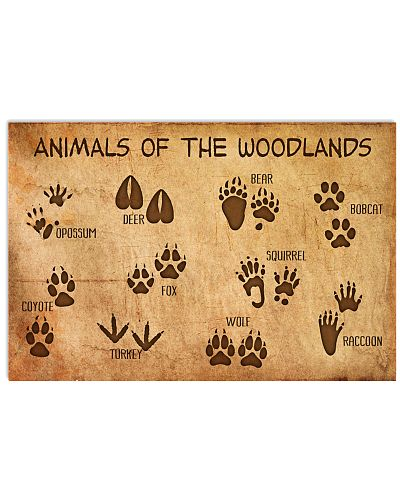 Animals Of The Woodlands