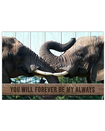 Elephant - You Will Forever Be My Always