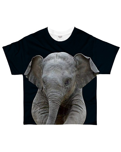 Elephant Front And Behind
