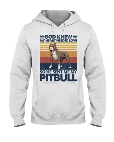 Dog He Sent Me My Pitbull