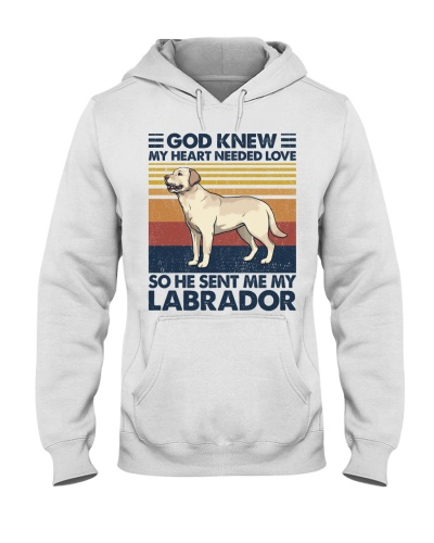Dog He Sent Me My Labrador