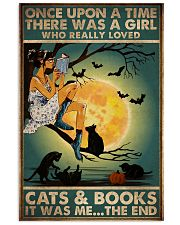 Books And Cats 16x24 Poster front
