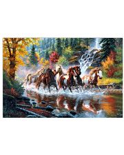 Horse Run 17x11 Poster front