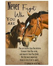 Horse Never Forget 11x17 Poster front