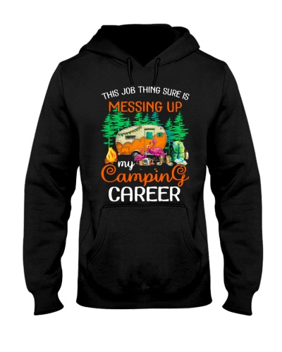 Campground Career