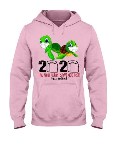 Turtles 2020