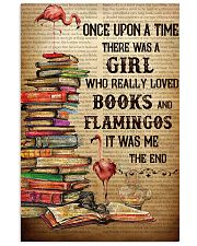 Flamingos And Books 24x36 Poster front