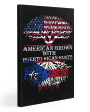 American with Puerto rican roots 20x30 Gallery Wrapped Canvas Prints front