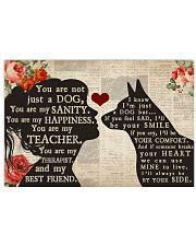 Australian Cattle Dog girl poster 24x16 Poster front