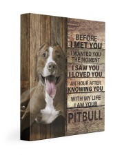 with my life I am your pitbull canvas Gallery Wrapped Canvas Prints tile