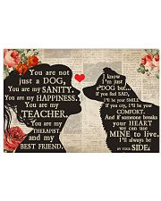 Border Collie girl poster 24x16 Poster front