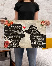Border Collie girl poster 24x16 Poster poster-landscape-24x16-lifestyle-20