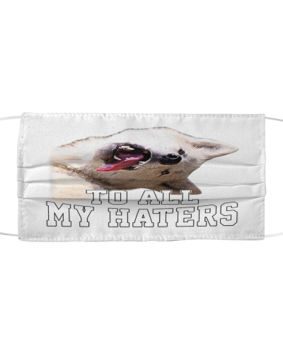 husky to all my haters