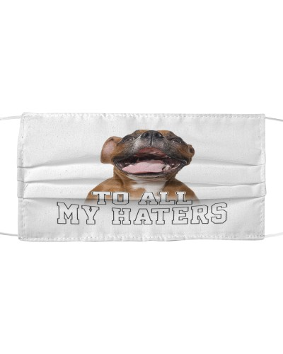 boxer to all my haters