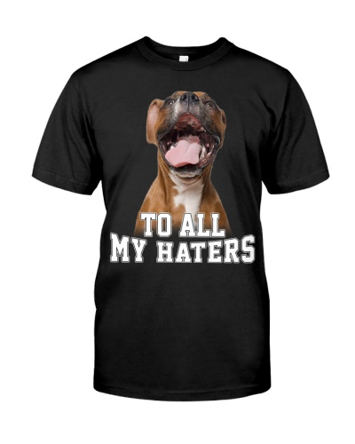 Boxer To all my Haters Funny