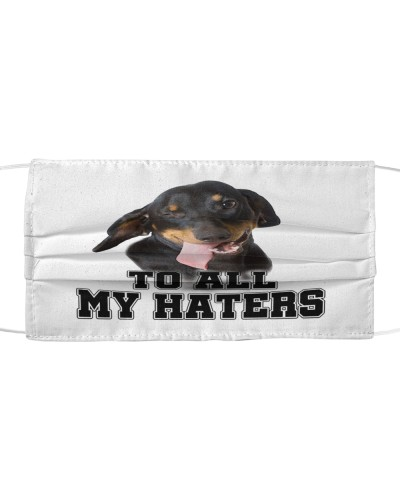 dachshund to all my haters
