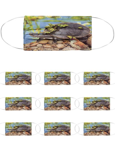 Turtle Loves L024
