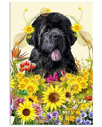 Newfouland Dog flower