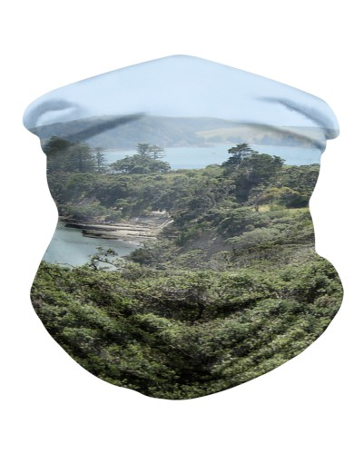 Motuihe Island 05