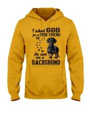 Dachshund Asked God Hooded Sweatshirt front
