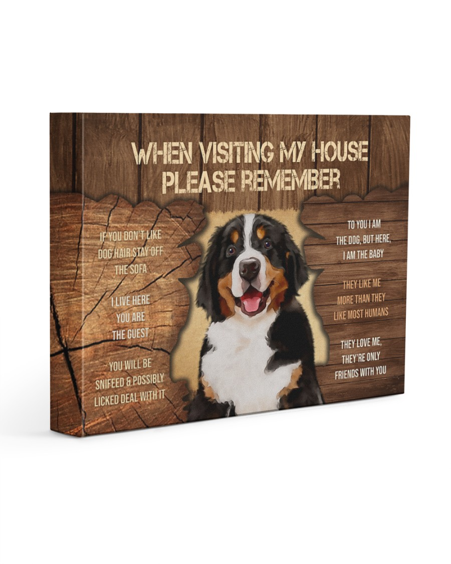 Visit home Bernese Mountain 14x11 Gallery Wrapped Canvas Prints