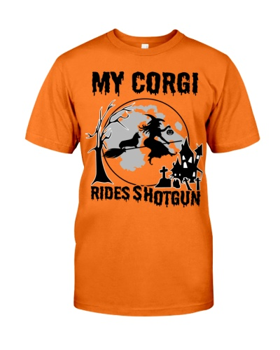 My Corgi rides shotgun