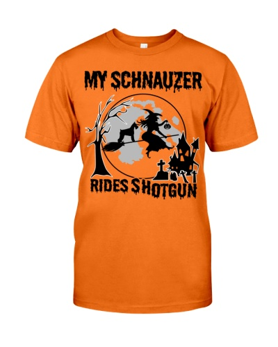My Schnauzer rides shotgun