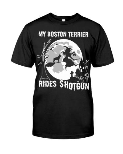My Boston Terrier rides shotgun