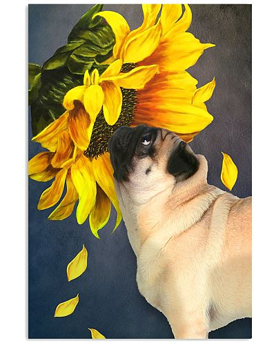 Pug sunflower