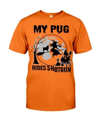 My Pug rides shotgun
