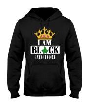 Excellence Hooded Sweatshirt thumbnail
