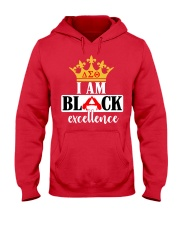 DST excellence Hooded Sweatshirt thumbnail