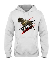 GR CH ZEBO ROM Hooded Sweatshirt tile