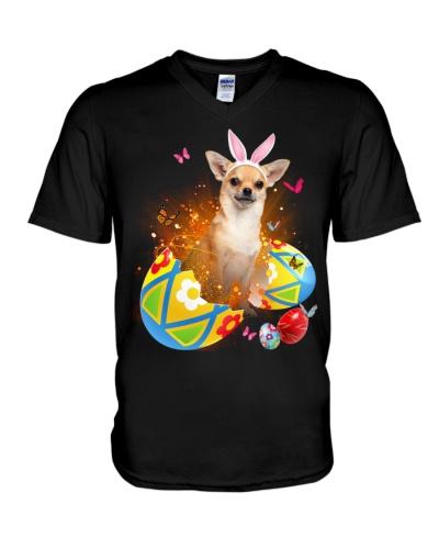 Chihuahua Easter Eggs