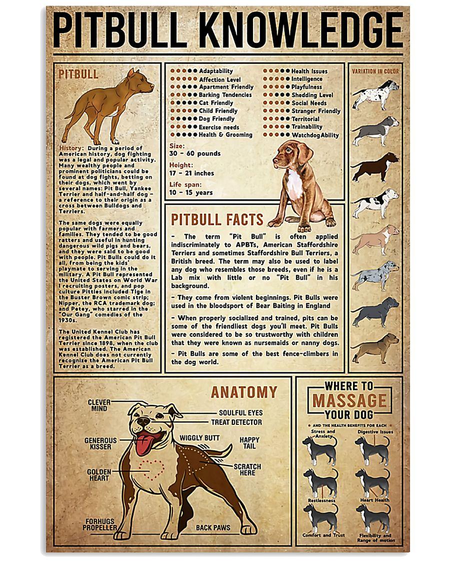Pitbull Knowledge 24x36 Poster