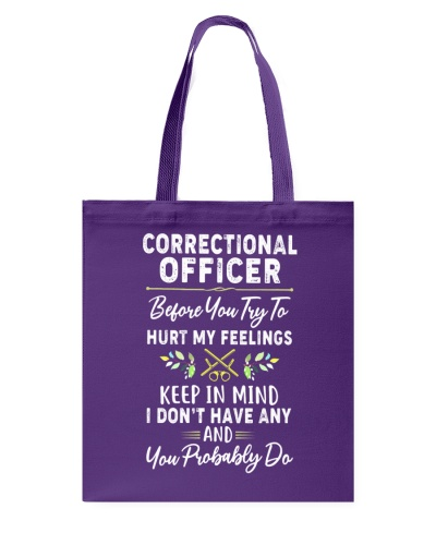 Correctional Officer TNT 0506