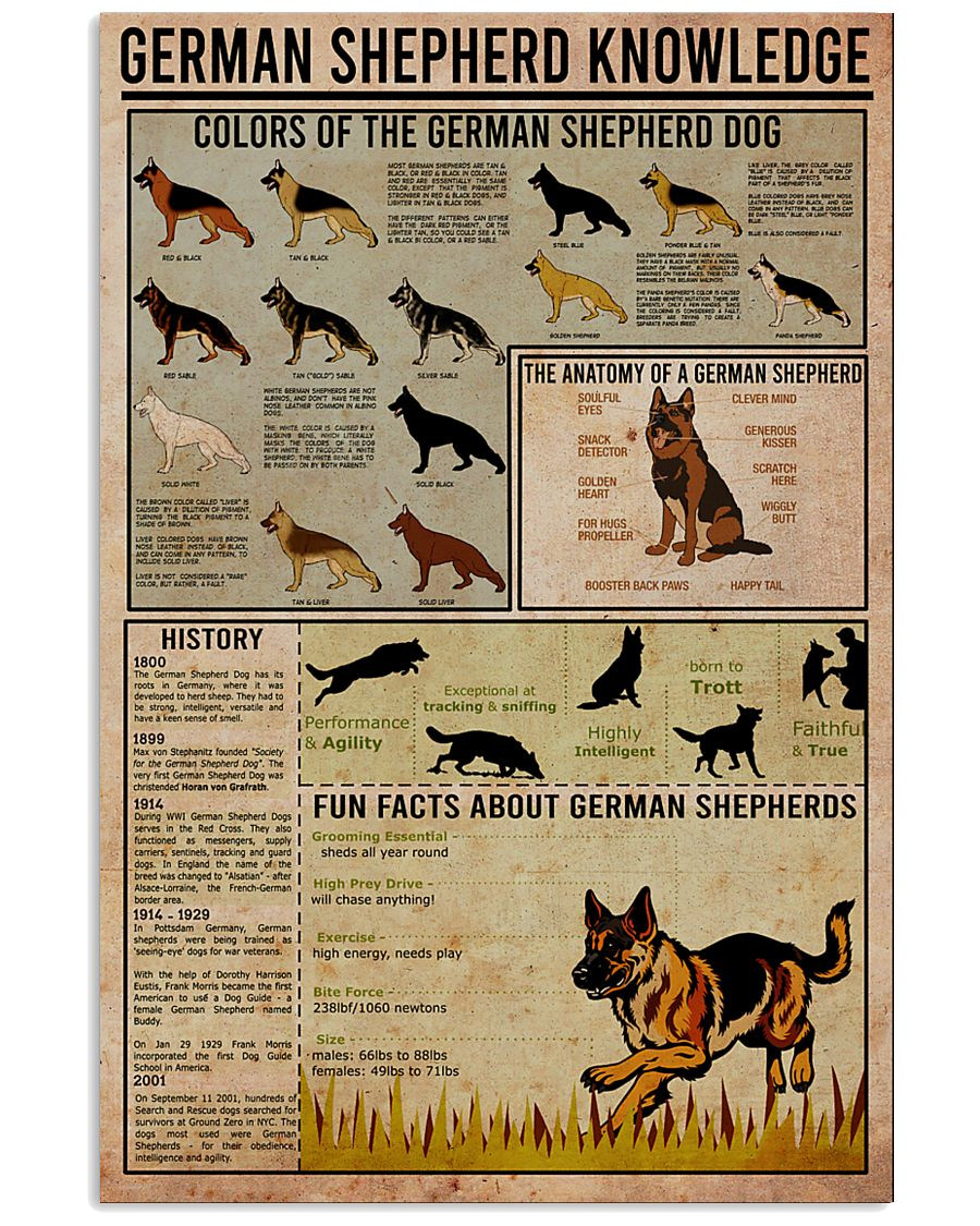 GERMAN SHEPHERD 11x17 Poster