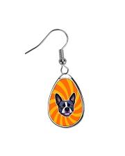 Be My Boston - Orange Boston Teardrop Earrings thumbnail