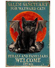 Salem sanctuary for wayward cats 11x17 Poster front