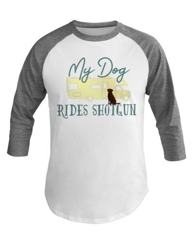 Chocolate Labrador Retriever Dog RV