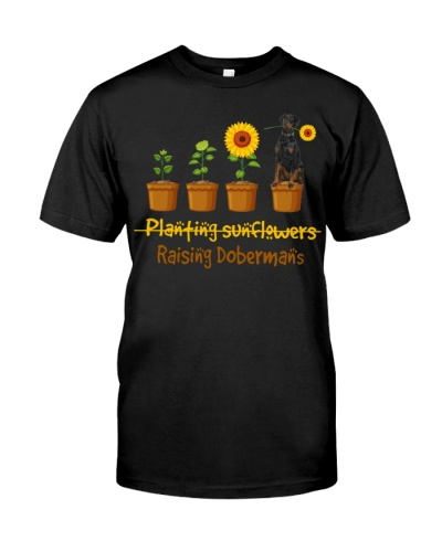 Doberman Planting Sunflowers