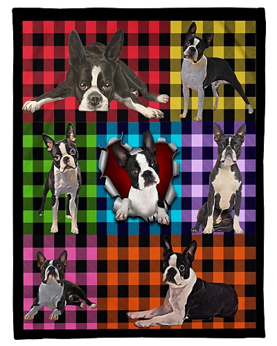 Boston Terrier Plaid