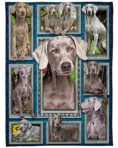 DogTee Weimaraner Window Frames For Dog Lovers