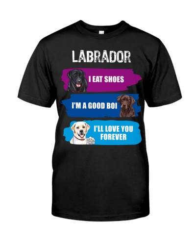 Labrador Retriever Eat Shoes