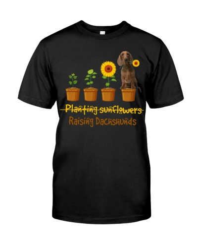 Dachshund Planting Sunflowers